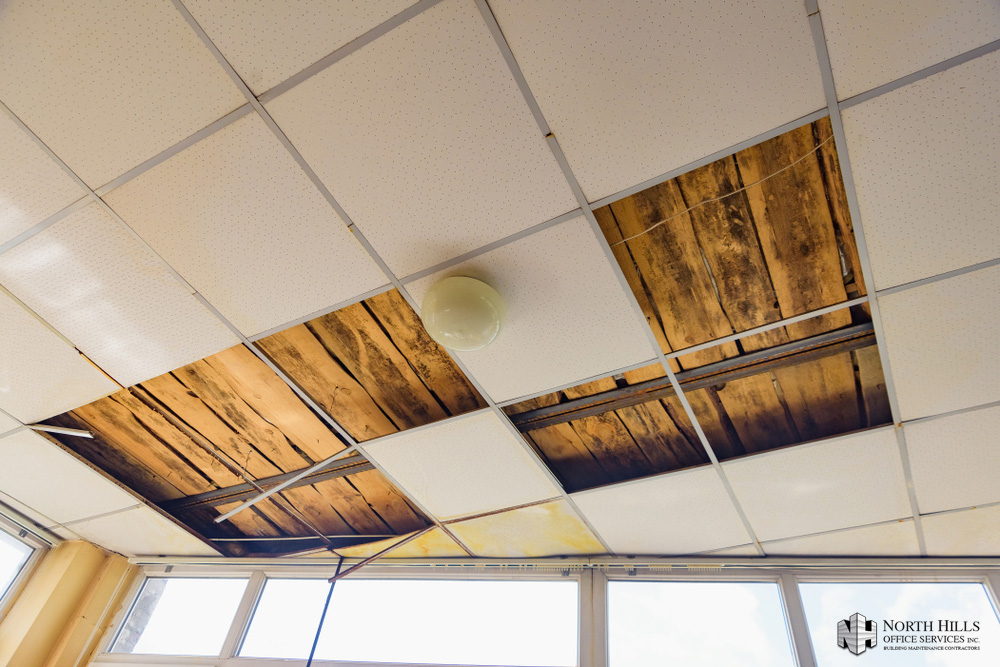 Why is restoring your acoustical ceiling better than replacing it